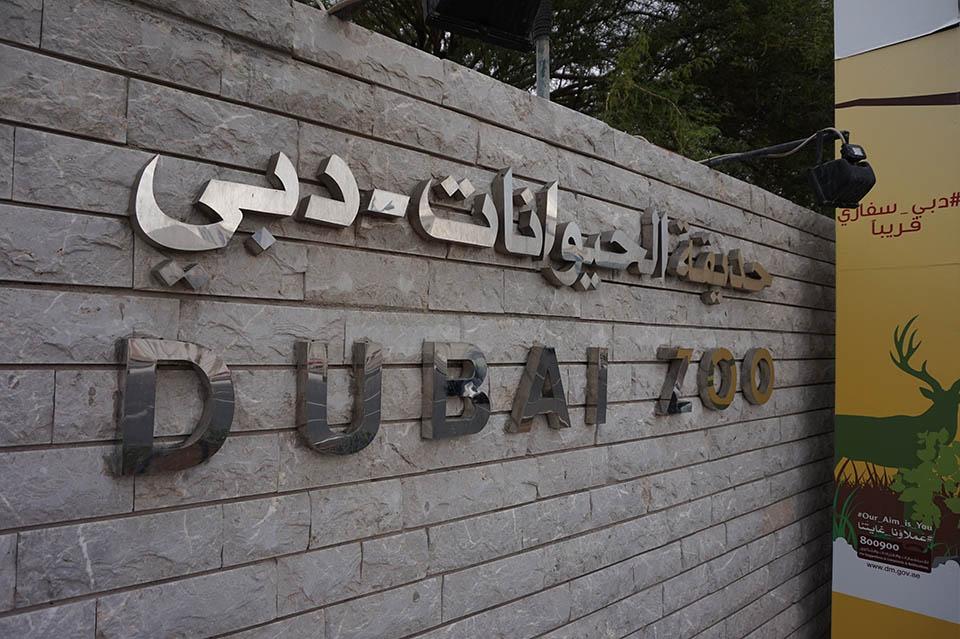Zoo Dubai