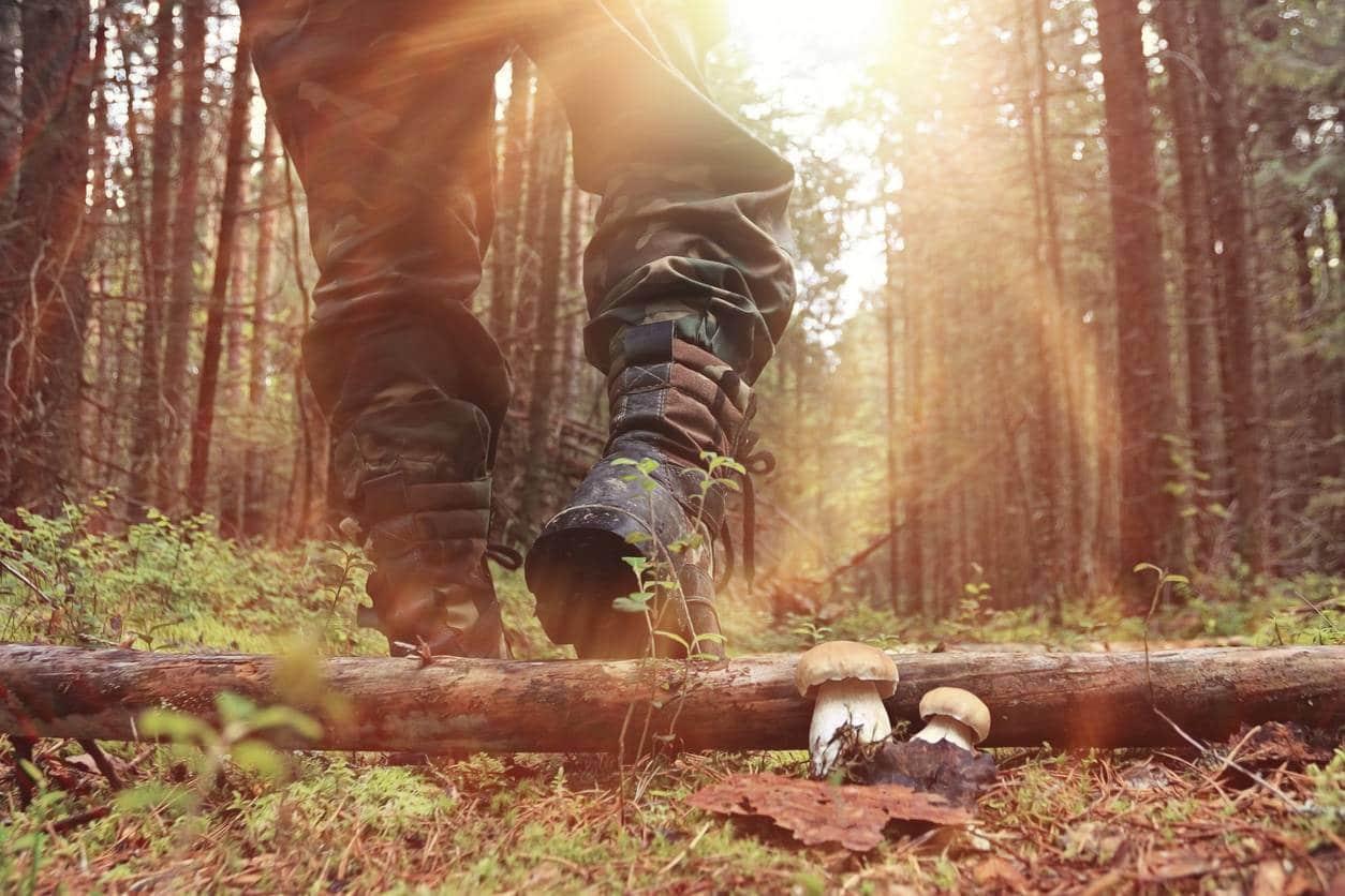 chasse pantalon chasseur